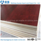 Professional Factory Nature Wood Veneered MDF for America Market