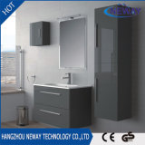 New Wall Mounted PVC Bathroom Wash Basin Cabinet with Side Cabinet