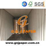 Excellent Quality Large Size Thermal Paper in Roll
