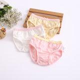 Children Female Baby Cotton Briefs Underwear Young Girl Underwear Wholesales