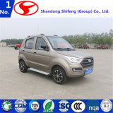 Electric Vehicle/Electric Car/Electric for Sale Made in China
