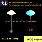 Mood Light Home Hotel Club Display LED Floor Lamp