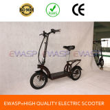 12 Inch Tire Strong Geared Motor Powerful Standing Adult Electric Mobility Scooter