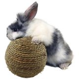 Pet Toy Rabbit Sisal Toy Chewing Ball Bird Activity Play Ball Interactive Play Ball Esg16215