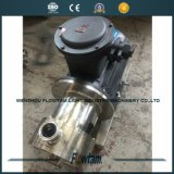 Sanitary Stainless Steel High Shear Dispersing Pump