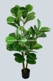 Plastic PE Fiddle Tree Artificial Plant for Decoration (51163)