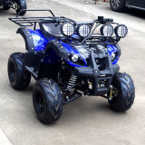 Jinyi Popular 110cc Mini Quad Bike ATV (JY-100-1B)