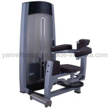 Wholesale Body Building Equipment Rotary Torso for Gym