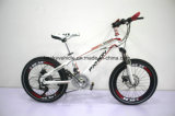 "Wholesale Price China MTB Bike with Carbon Steel Frame 20"" Mountain Bikebq-MTB-012"