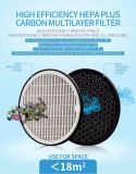 Non-Equilibrium Ion Group Air Purifier with HEPA