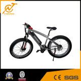 Bafang MID Motor 750W Electric Fat Tire Bike with Battery