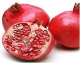 Pure Pomegranate Seed Oil for Healthy Food