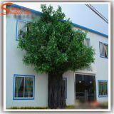 Evergreen Garden Decoration Fake Artificial Ficus Tree