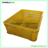 Customizable Plastic Baby Chicken Chick Duck Crate Poultry Transport Coop