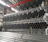 8 Inch Schedule 40 Galvanized Steel Pipe Price, Agricultural Galvanized Steel Water Tube