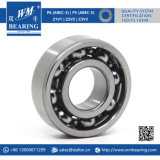 Auto Motorcycle Parts Electric Motor Deep Groove Ball Bearing (6202)