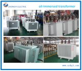 Chinese Supplier Dyn11 Oil Immersed Power Transformer Price for Power Station