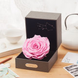 Promotion Constellation Preserved Flower Gift for Valentine′s Day