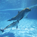 Decoration Material Ocean Dolphins Living Room 3D Wallpaper Mural