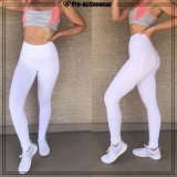 Hot Selling Fitness No See Through Womens Workout Leggings
