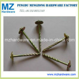 Yellow Color Umbrella Head Roofing Nail