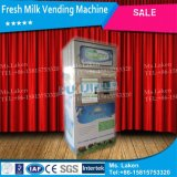 Automatic Milk Vending Shop (M-02)