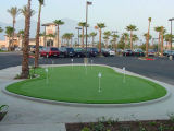 SGS Long Life-Time Anti-UV Artificial Lawn Golf Synthetic Turf