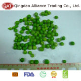 High Quality Frozen Green Peas with Good Price