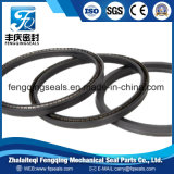 Auto Part Hydraulic PTFE Spring Energized Seal