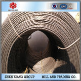 Steel Wire Rod in Coil Made in China