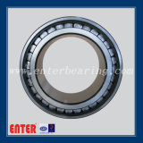 Double Row Cylindrical Roller Bearing Manufacturer