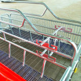 Farrowing Crate for Sale Pig Equipment for Poultry Farm of Sows