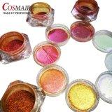 Duochrome Eyeshadow Loose Powder Cosmetic Chameleon Eyeshadow Pigment Powder