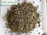 Gunpowder 9501 9374 9575 3505green Tea for Turkey, Hazakhstan Market