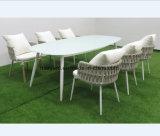 Coffee Shop/Garden/ Restaurant Furniture for Dining