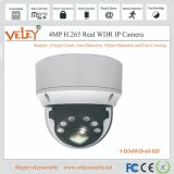 Hikvision IP Camera Nvrs Price Alarm Security Video Vigilance System