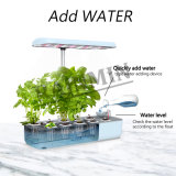 Hydroponics Indoor Herb Garden with Light