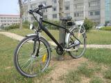 Classic 36V 250W Cheap Electric Dirt Bike for Sale