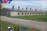 Prefabricated Hot-DIP Galvanized Steel Structure Poultry Shed Chicken Farm with Low Cost