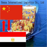 China Sea Shipping Agent From Shenzhen/Shanghai/Guangzhou/Xiamen to Alexandria/Egypt
