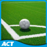 Artificial Grass, Football Grass, Synthetic Turf for Sport (PD/SM50F8)