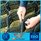 High Tensile Strength HDPE Geocell for Reinforcement of The Riverbed