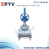 API Wcb Flanged Ends Globe Valve Manual