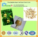 Engelhardtia Leaf Extract Powder