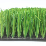 Hot Sale Football Artificial Turf Grass with Cheapest Price (Y50)