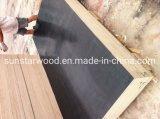 Film Faced Plywood/ Marine Board