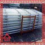 Wholesale Hot Sale Steel Ring Lock Scaffolding