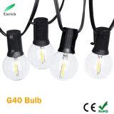 5.5m 10bulbs/String G40 Globe LED Bulb String Light Waterproof