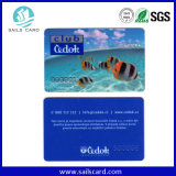 PVC Plastic Card Printing in China