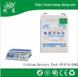 6V 5ah Li-ion Lithium Battery with Pack